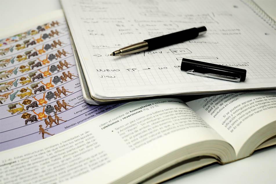 ¿Cómo sacarle provecho inmediato a tus estudios en tu vida laboral?